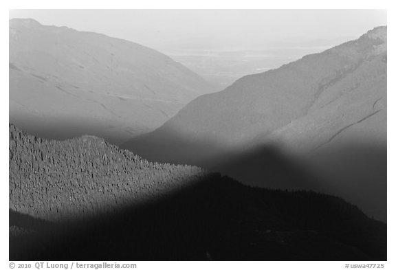 Fog on bottom of Cascade River Valley in early morning. Washington (black and white)