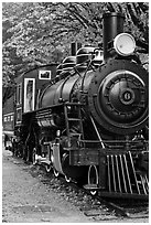 Historic steam locomotive, Newhalem. Washington (black and white)