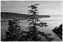 Deception Bay, Whidbey Island. Olympic Peninsula, Washington (black and white)