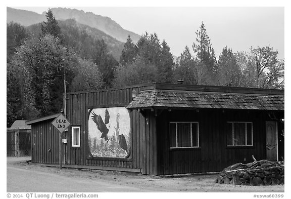 Wooden house with painted mural, Skagit Valley. Washington (black and white)