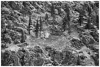 Rocky slopes and autumn colors, Lake Chelan. Washington ( black and white)