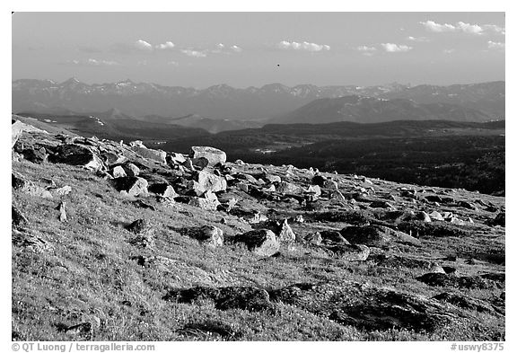 Alpine meadow and rocks, late afternoon, Beartooth Range, Shoshone National Forest. Wyoming, USA (black and white)
