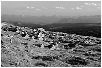 Alpine meadow and rocks, late afternoon, Beartooth Range, Shoshone National Forest. Wyoming, USA ( black and white)