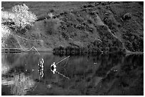Fly fishermen, Snake River. Wyoming, USA ( black and white)