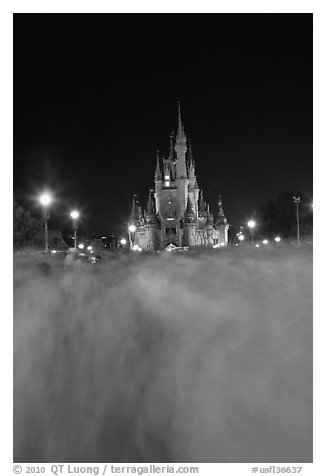 Blurred crowds and Cinderella Castle at night. Orlando, Florida, USA (black and white)