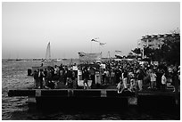 Crowds watching sunset at Mallory Square. Key West, Florida, USA ( black and white)