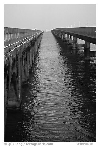 Old and new Seven-mile bridges. The Keys, Florida, USA (black and white)