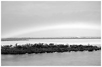 Rainbow above mangroves, Key West. The Keys, Florida, USA (black and white)