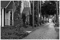 Cobblestone alley. St Augustine, Florida, USA (black and white)