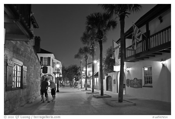Historic street with palm trees and old buidlings. St Augustine, Florida, USA (black and white)