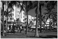 South Beach Art Deco buildings seen through palm trees, Miami Beach. Florida, USA (black and white)