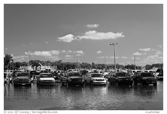 Cars in flooded lot, Matheson Hammock Park, Coral Gables. Florida, USA (black and white)