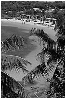 Beach and palm trees from above, Bahia Honda State Park. The Keys, Florida, USA ( black and white)