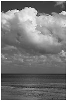 Atlantic ocean views with afternoon clouds, Matacumbe Key. The Keys, Florida, USA (black and white)