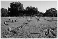 Cemetery. Orlando, Florida, USA (black and white)
