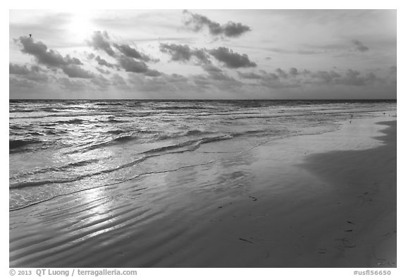 Late afternoon, Fort De Soto beach. Florida, USA (black and white)