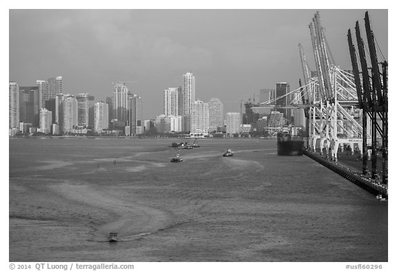 Miami harbor and skyline at sunrise. Florida, USA (black and white)