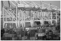 Shipping containers and cranes. Florida, USA ( black and white)