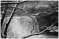 Snow-covered branch and Cumberland falls. Kentucky, USA (black and white)