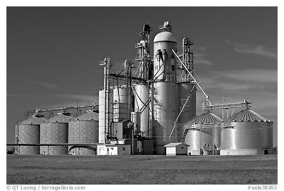 Grain elevator. Louisiana, USA (black and white)