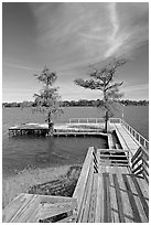 Deck and bald cypress on Lake Providence. Louisiana, USA (black and white)