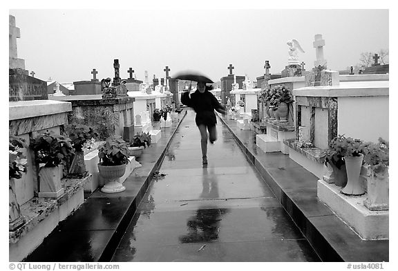Black and white picture photo rain in saint louis cemetery new orleans louisiana usa