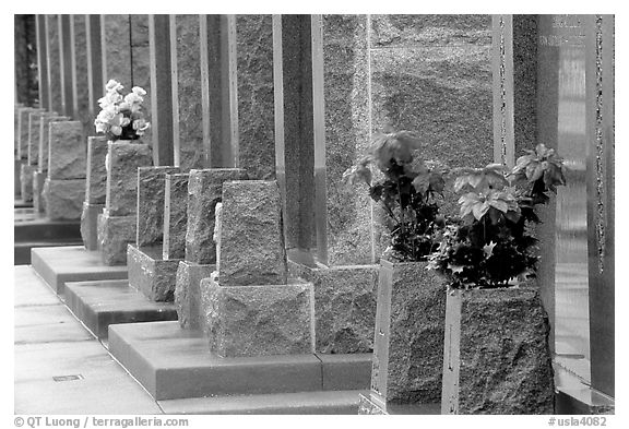 Flowers and tombs in Saint Louis cemetery. New Orleans, Louisiana, USA (black and white)