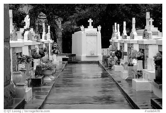 Tombs in saint louis cemetery new orleans louisiana usa