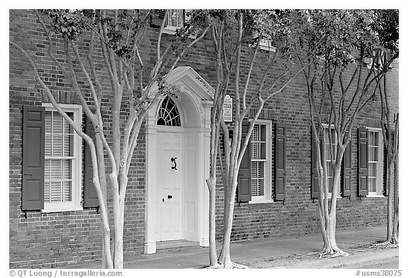 Rows of trees and Texada house. Natchez, Mississippi, USA (black and white)