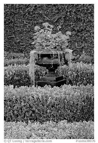 Vasque with flowers and spanish moss in garden. Natchez, Mississippi, USA (black and white)