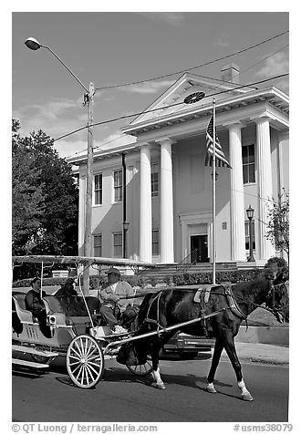 Horse carriage and courthouse. Natchez, Mississippi, USA