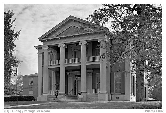 Magnolia Hall, morning. Natchez, Mississippi, USA (black and white)
