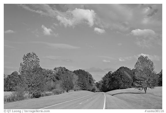 Road in meadow. Natchez Trace Parkway, Mississippi, USA (black and white)