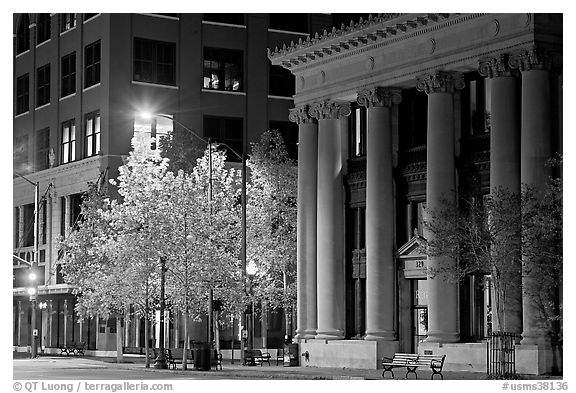 Trees in fall colors and greek revival building at night. Jackson, Mississippi, USA (black and white)