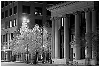 Trees in fall colors and greek revival building at night. Jackson, Mississippi, USA ( black and white)