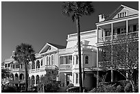 Row of Antebellum mansions. Charleston, South Carolina, USA ( black and white)