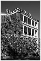 Historic antebellum mansion. Charleston, South Carolina, USA ( black and white)