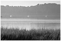 Beaufort Bay, with grasses and yachts. Beaufort, South Carolina, USA ( black and white)