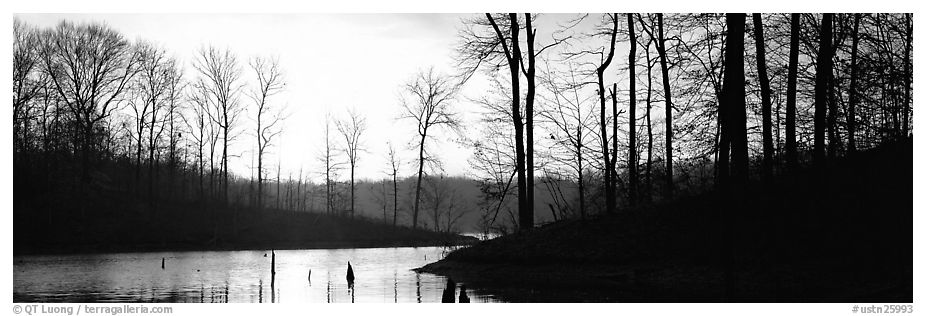 Panoramic black and white picture photo winter landscape with bare trees and pond at sunrise tennessee usa