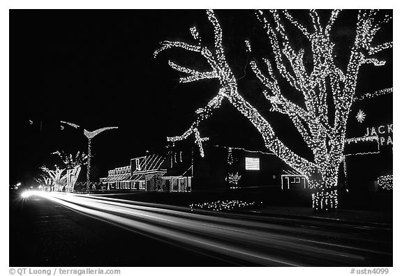 Black and White Picture/Photo: Christmas lights and traffic ...