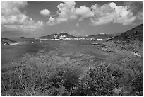Crown Bay. Saint Thomas, US Virgin Islands ( black and white)