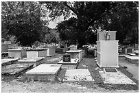Tombs, Charlotte Amalie. Saint Thomas, US Virgin Islands ( black and white)