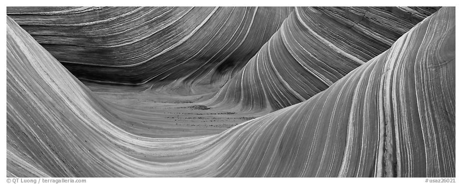 The Wave. Coyote Buttes, Vermilion cliffs National Monument, Arizona, USA (black and white)