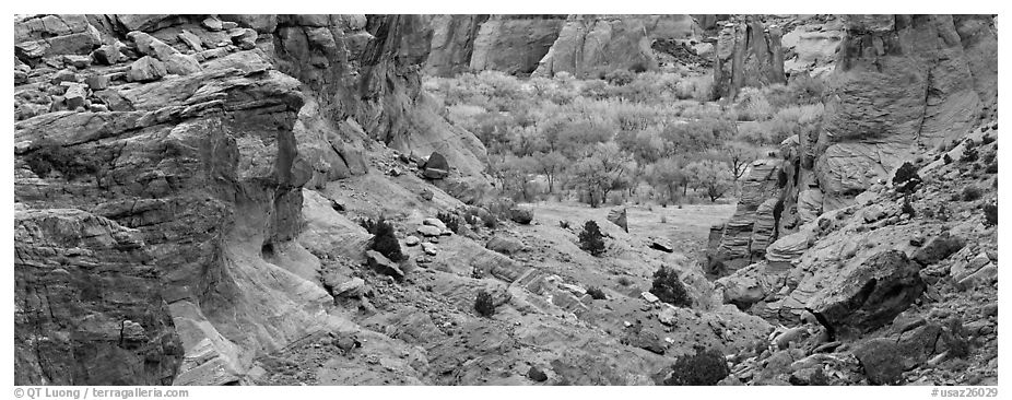 Canyon de Chelly landscape. Canyon de Chelly  National Monument, Arizona, USA (black and white)