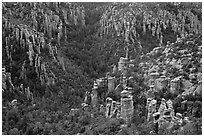 Landscape of spires from Massai Point. Chiricahua National Monument, Arizona, USA (black and white)