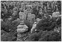 Rhyolite pinnacles. Chiricahua National Monument, Arizona, USA (black and white)
