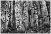 Organ pipe volcanic rock formations. Chiricahua National Monument, Arizona, USA (black and white)