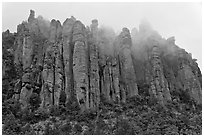 Stone columns. Chiricahua National Monument, Arizona, USA (black and white)