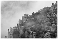 Rock pillars and fog. Chiricahua National Monument, Arizona, USA (black and white)
