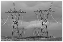 High voltage power lines. Arizona, USA ( black and white)